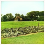 A visit to Fota Wildlife Park
