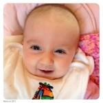 Twelve weeks old